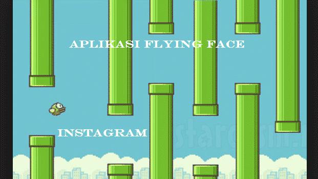 Aplikasi Flying Face