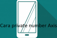 Cara private number Axis