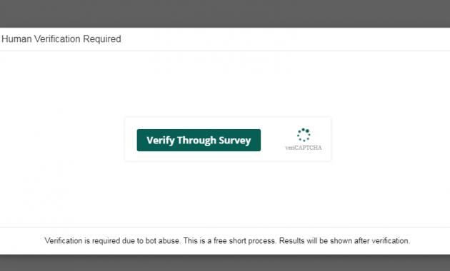 survey social spy whatsapp